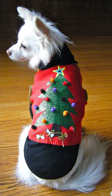 PETS: DIY Ugly Christmas Sweater - Really Awesome Costumes
