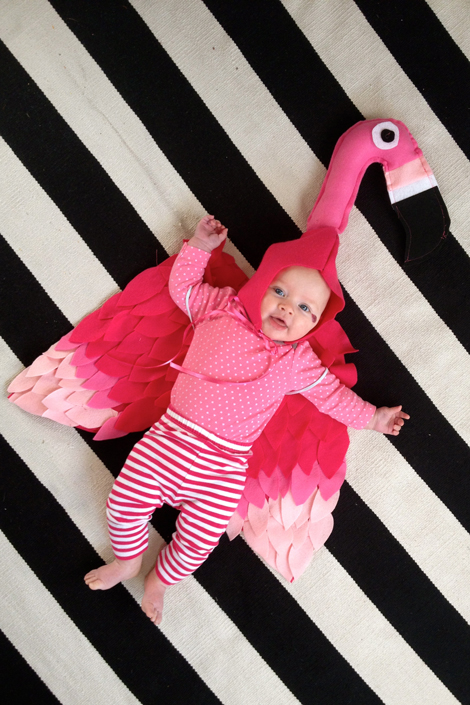 diy-baby flamingo-costume